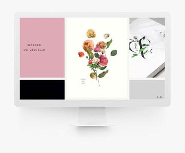 Venamour 工作室 網頁設計